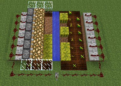 Improved melon farm